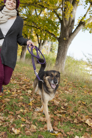 omnivore: Smiling woman walking dog in park LANG_EVOIMAGES