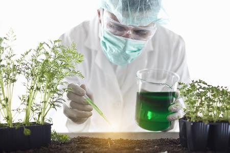 specimen testing: Scientist dropping liquid on plants LANG_EVOIMAGES