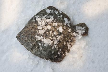omnivore: Turbot on bed of rock salt LANG_EVOIMAGES