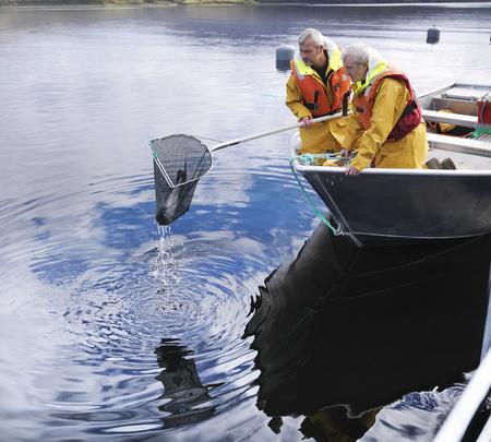 Fishermen using net in still lake