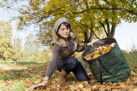 knelt: Woman gathering fall leaves in park