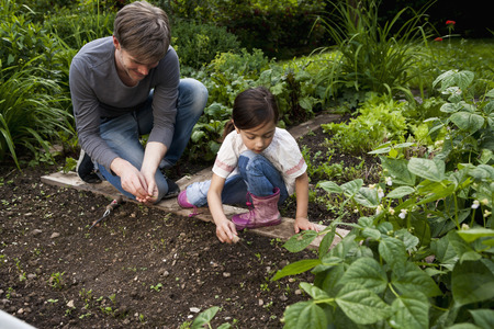 seeding: Father and daughter gardening together LANG_EVOIMAGES