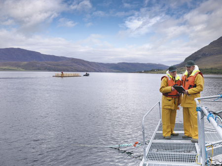 Fishermen talking on dock LANG_EVOIMAGES