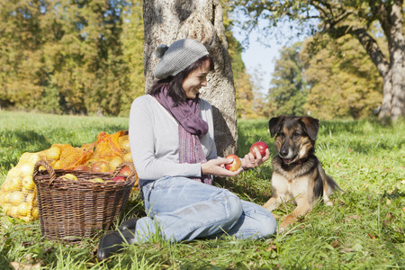 carryall: Woman picking apples with dog