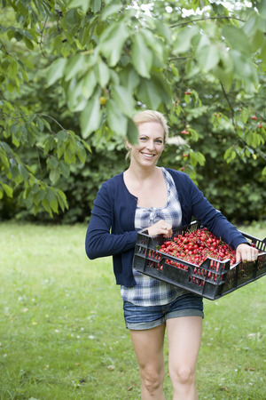 selections: Woman carrying basket of cherries LANG_EVOIMAGES