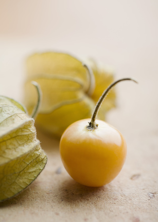 Close up of cherry tomato
