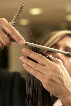 patron of europe: Hair stylist cutting clients hair