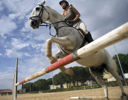 Woman riding horse over hurdle LANG_EVOIMAGES