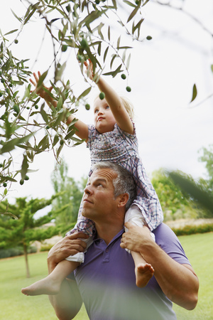 Father helping daughter pick fruit LANG_EVOIMAGES