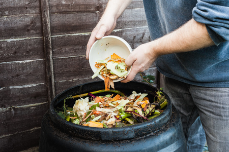putrefied: Man adding to compost bin outdoors