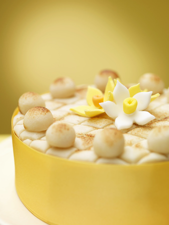 yellows: Close up of decorated cake