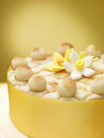 lavishly: Close up of decorated cake