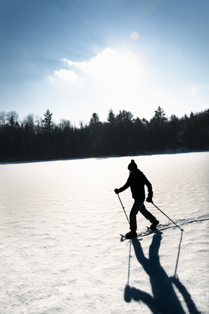 snows: Cross country skier on snowy field LANG_EVOIMAGES