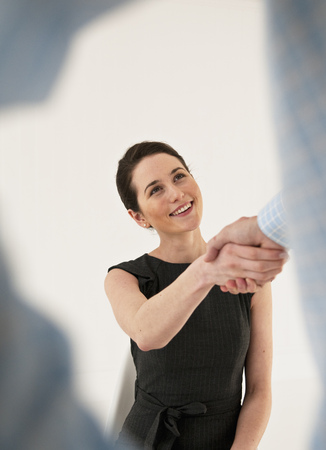 agrees: Business people shaking hands
