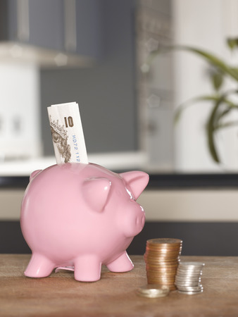 Piggy bank with money on table LANG_EVOIMAGES