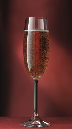 Close up of glass of sparkling wine LANG_EVOIMAGES