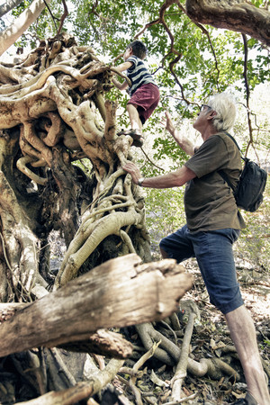 climbed: Older man and grandson climbing tree LANG_EVOIMAGES