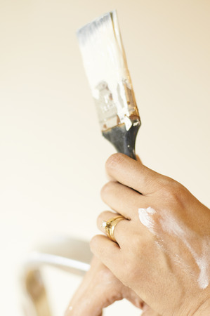 appendages: Womans paint stained hand and brush LANG_EVOIMAGES