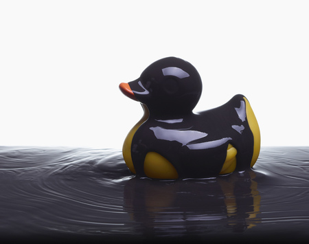 ravage: Rubber duck covered in oil