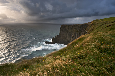 seascapes: Tall grass growing on coastal cliffs