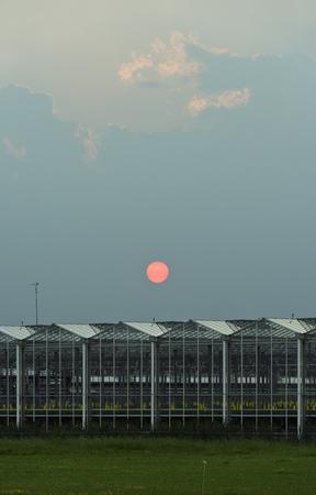 conservatories: Greenhouses under sunset sky LANG_EVOIMAGES