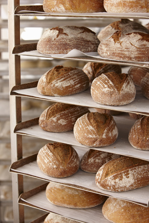 heats: Trays of bread on rack in kitchen LANG_EVOIMAGES