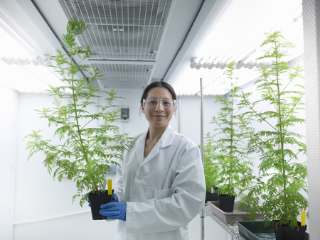rd: Scientist holding potted plant in lab LANG_EVOIMAGES