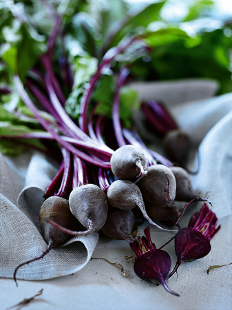 uncomplicated: Close up of bunch of radishes LANG_EVOIMAGES