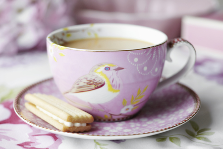 Close up of cup of tea and cookie LANG_EVOIMAGES