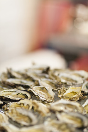 Close up of bowl of oysters LANG_EVOIMAGES