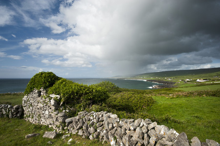 irish countryside: Grass on stone wall in rural landscape LANG_EVOIMAGES
