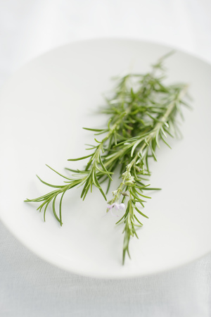 uncomplicated: Close up of plate of rosemary