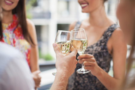 lavishly: Friends toasting each other at party