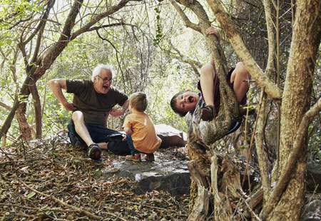 climbed: Father and his sons playing in the forest