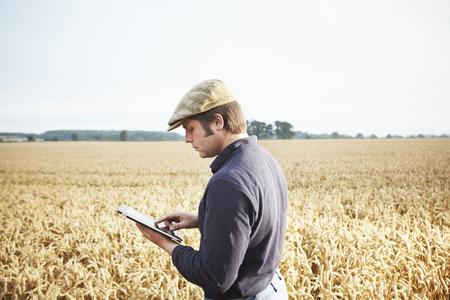 Farmer using tablet computer in field