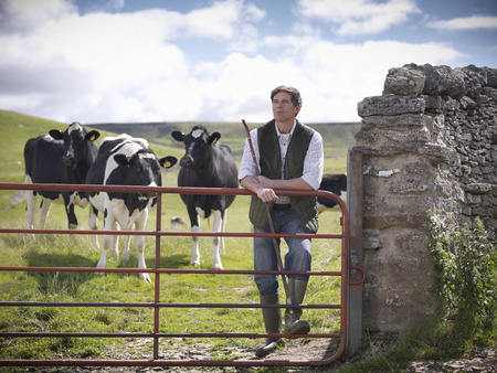 Farmer standing in field with cows LANG_EVOIMAGES