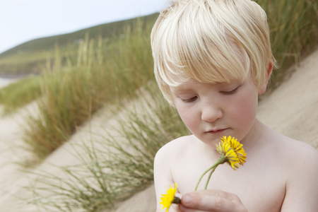 nackter junge: Boy holding flowers on sand dune