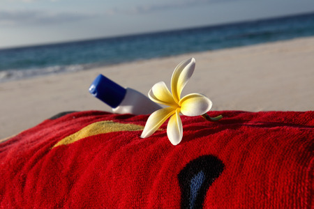 shorelines: Flower and sunscreen on towel on beach