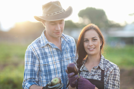 Young farm workers with aubergines grown on farm
