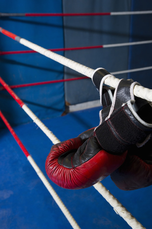 Boxing gloves hanging on ropes of ring