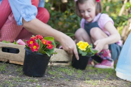 Madre, hija, jardinería, juntos