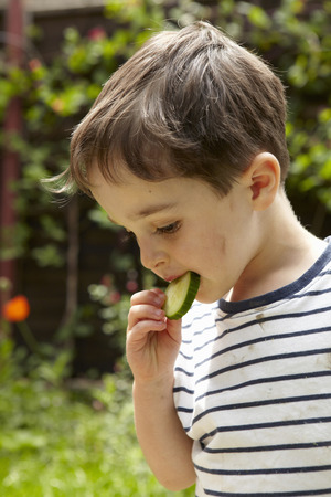 Boy eating cucumber outdoors LANG_EVOIMAGES