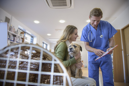 gratify: Veterinarian talking to dog owner LANG_EVOIMAGES