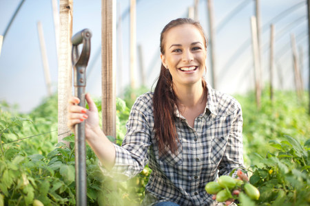 looking at viewer: Young woman working at vegetable farm LANG_EVOIMAGES