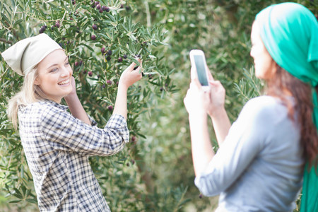 pleasurable: Woman taking photo of friend in olive grove