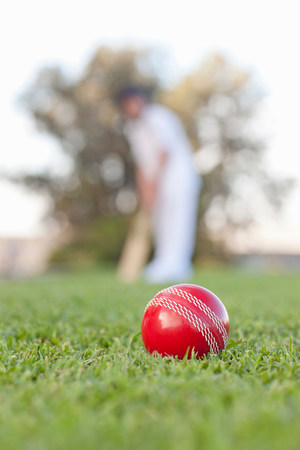 Cricket ball with man in background LANG_EVOIMAGES