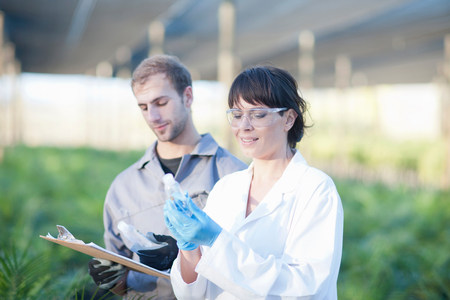 Scientist and worker in plant nursery,looking at bottles