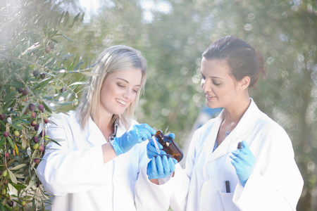 Two women with sample of olive oil in olive grove