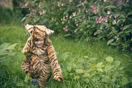 Boy wearing tiger costume outdoors