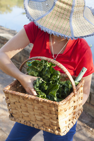 Woman carrying basket of vegetables LANG_EVOIMAGES